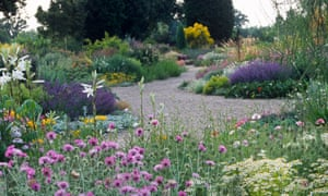 Drought resistant planting at Beth Chatto's garden at Elmstead Essex