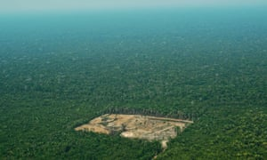 An aerial view of deforestation in the western Amazon region of Brazil.