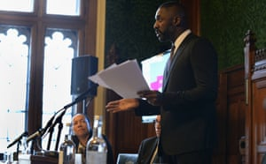 Idris Elba spoke in the UK's parliament about the lack of diversity in UK film and television just as the #OscarsSoWhite row was breaking