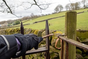 Is this the new normal? A walker uses a stick to open a gate in Wharfedale, West Yorkshire.