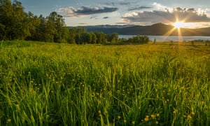 The midnight sun over a meadow in northern Norway.