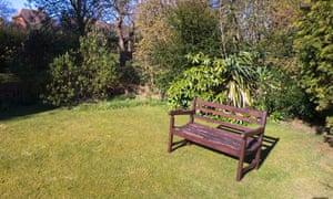 Suburban garden in summer, Kent, England.