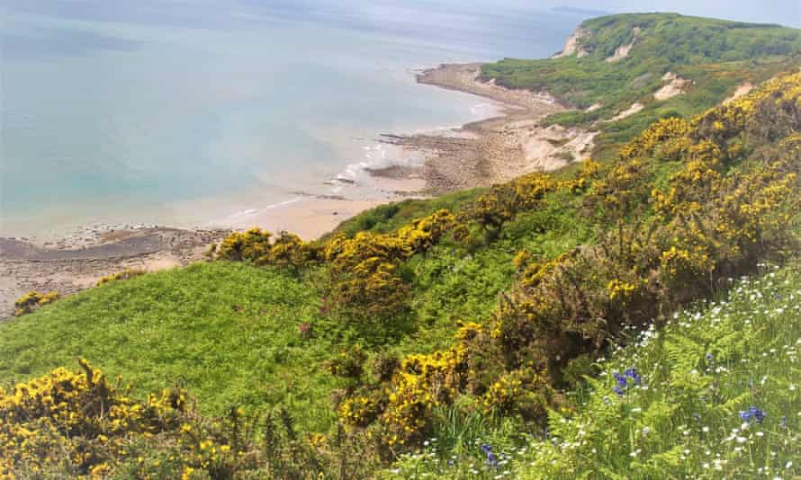 Fairlight Glen Beach, Hastings. 'At low tide you can walk back to Hastings under the cliffs, spotting fossils.'