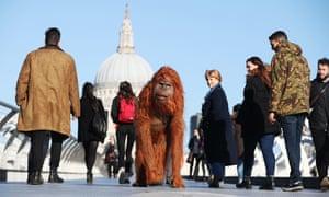 life-size animatronic orangutan