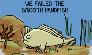 First Dog on the Moon highlights the extinction of the smooth handfish