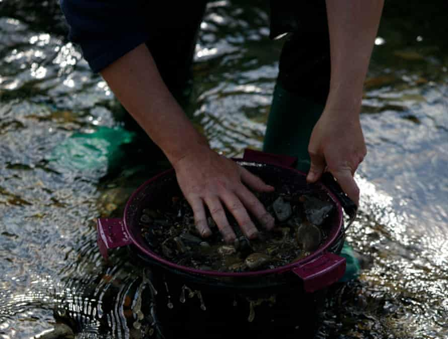 The hands of someone panning for gold in a Scottish river