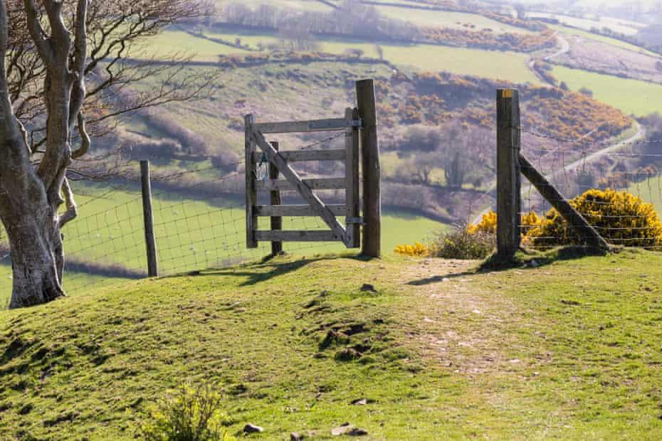 A footpath on the Coleridge Way in Exmoor national park.