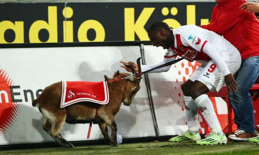 Anthony Ujah celebrates by grabbing Hennes VIII by the horns.