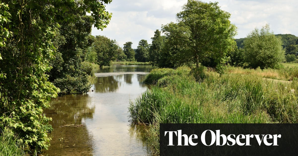 Heatwaves, sewage, pesticides: why England's rivers need a 'new deal' to avert crisis