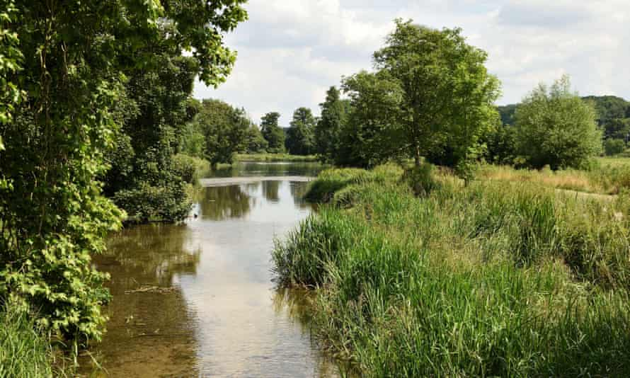 The River Chess, a chalk stream, began to dry out at the beginning of the 1990s, often for years in a row