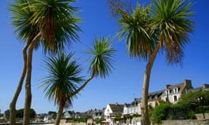 "Houses on the waterfront, ""Ile de Batz"" island"