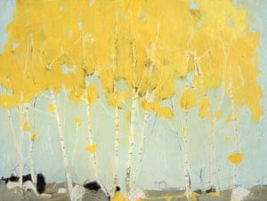 Golden Birch, 2016 by Ffiona Lewis.
