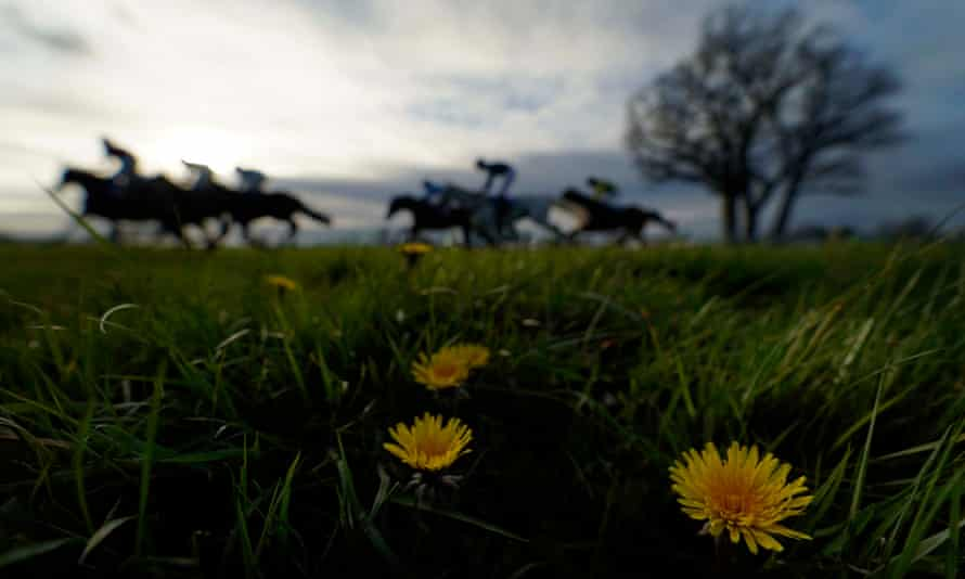 Almost 87% of the jockeys interviewed said they are currently experiencing 'stress, anxiety or depression'.