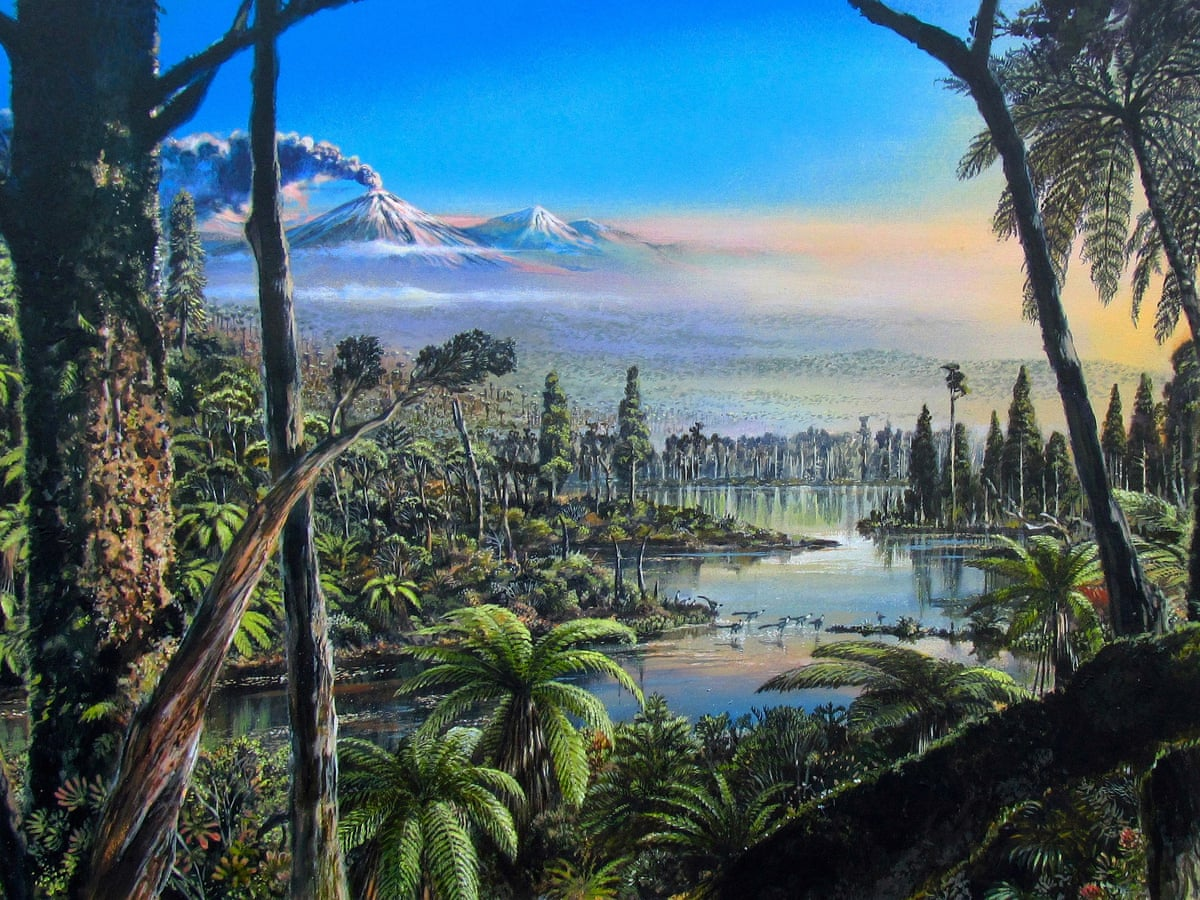 Antarctica was warm enough for rainforest near south pole 90m years ago   Antarctica   The Guardian