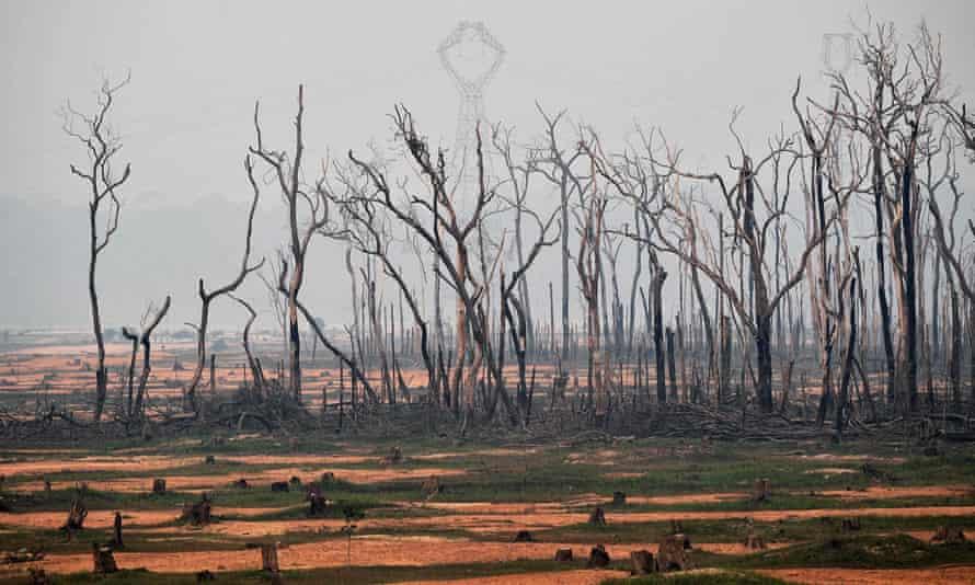 Burned areas of the Amazon rainforest, near Porto Velho, Rondonia state, Brazil, on 24 August 2019.