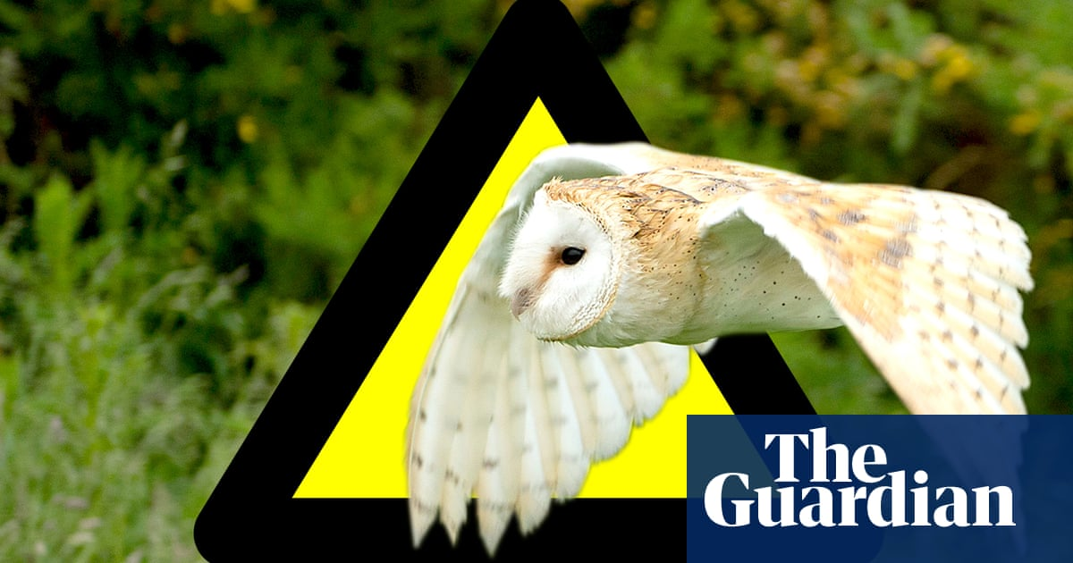 HS2 will destroy or damage hundreds of UK wildlife sites – report