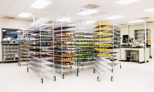 Shelf life: Apeel's HQ in California.