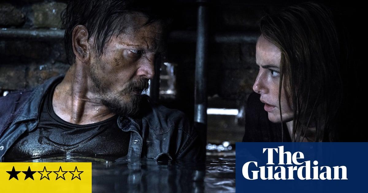 Crawl review – slight B-movie horror