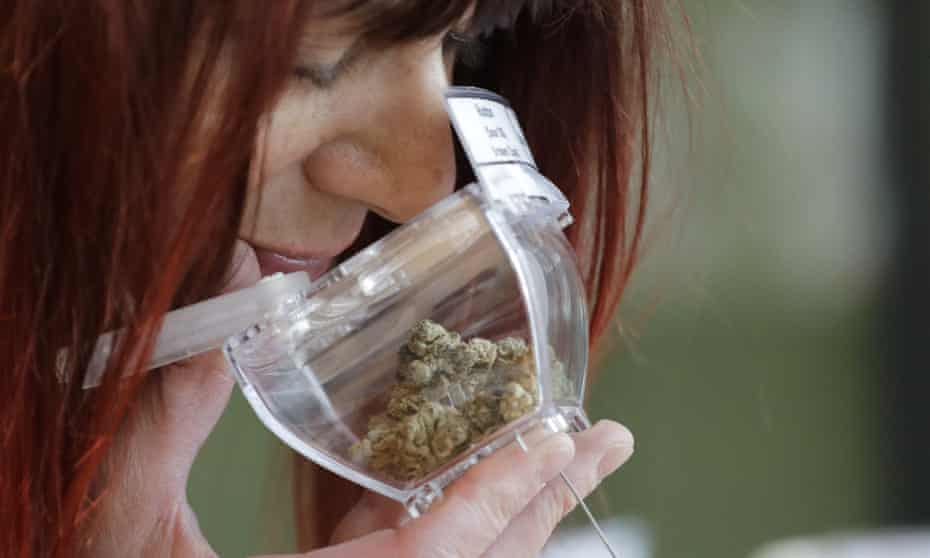 A customer sniffs a display sample of marijuana at a retail shop in Vancouver.