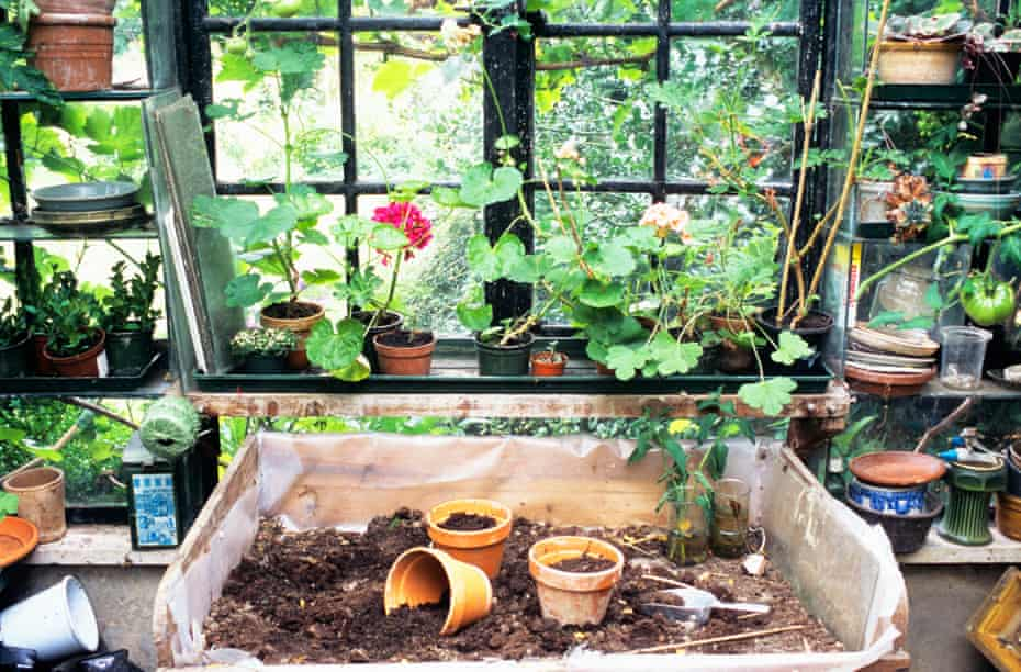 Potting bench in potting shed