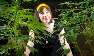 Altered State: Marijuana in California, curated by Sarah Seiter, is an exhibition at the Oakland Museum of California that bills itself as the country's first to explore the polarizing plant.