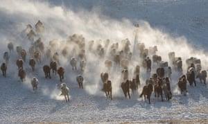 Herdsmen drive horses on grassland in Chifeng, China