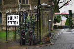 Two dogs sit outside a polling station at St Matthew's church in Hayfield, Derbyshire