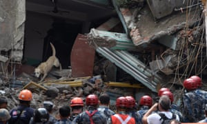 A US dog searches through the rubble in Kathmandu for a live human scent as Nepalese and US search and rescue teams watch. The US team was looking for two more survivors who were allegedly speaking with rescued teenager Pemba Lama.