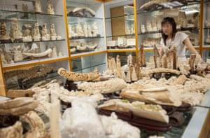 An ivory trader is seen in a warehouse in Kowloon. While China and the United States have recently pledged landmark commitments to halt the ivory trade, the Hong Kong government has resisted such a move, WildAid says.