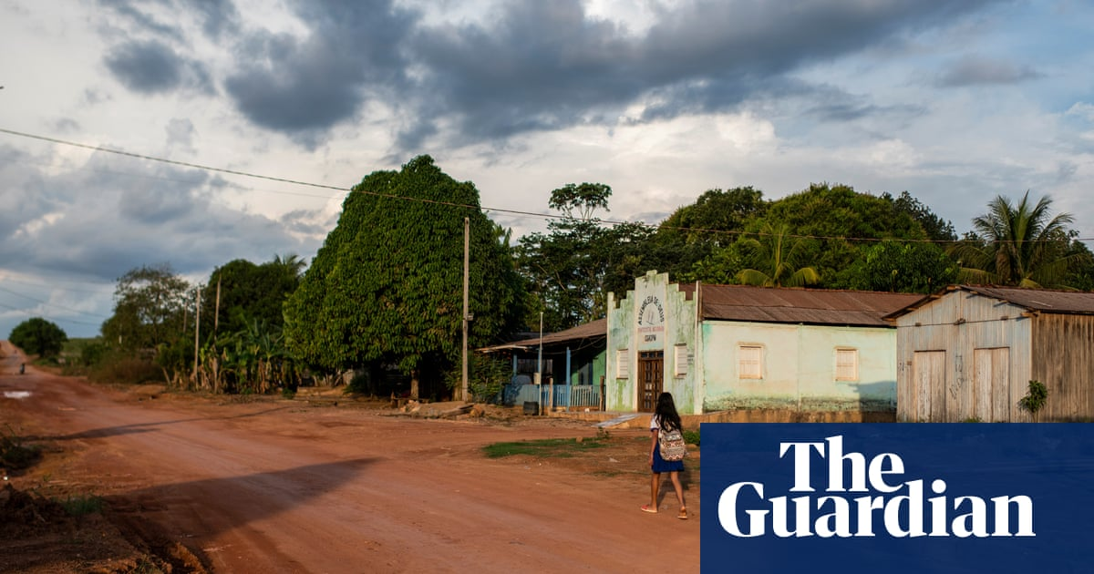 'Everyone's fleeing': Brazil cracks down on illegal mining in Amazon – for now