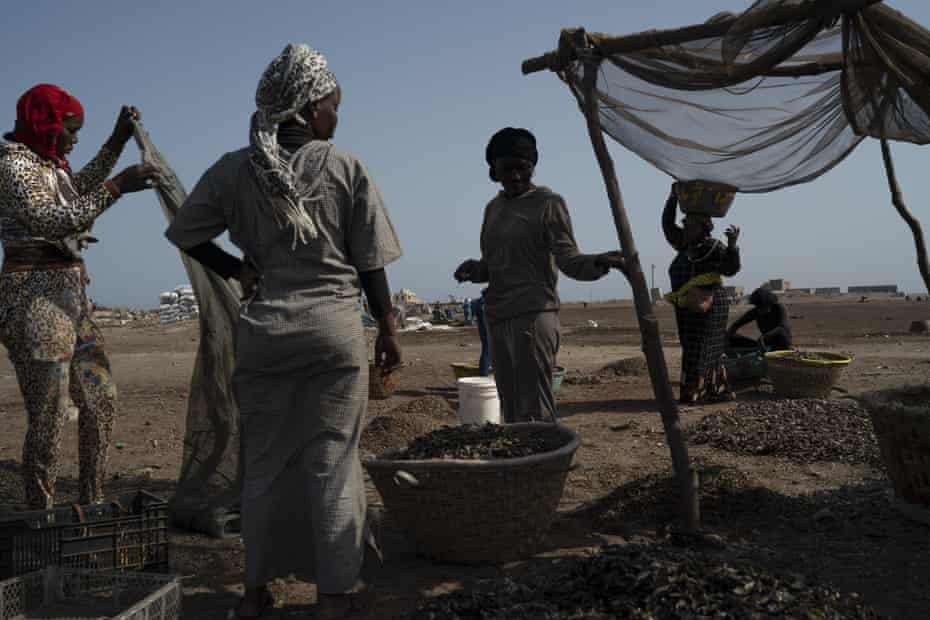 Fatou Samba, right, president of the association of female fish processors, carries on her head a basket filled with the remains of processed fish at Bargny beach.