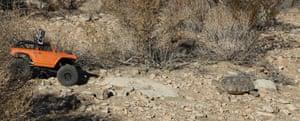 Hardshell Labs' rover and a desert tortoise.