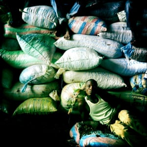 A manual labourer rests on sacks of cocoa at the largest state-owned exporter in Ivory Coast.