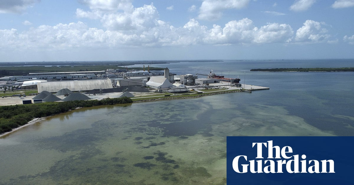 Florida faces 'imminent' pollution catastrophe from phosphate mine pond