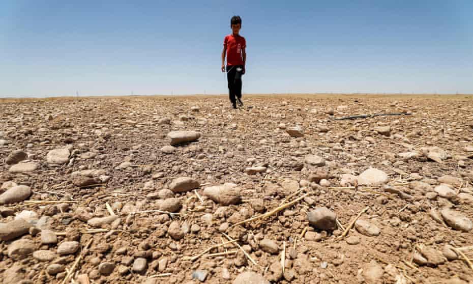 Boy walks through a dried up agricultural field in the Saadiya area, north of Diyala in eastern Iraq.