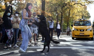 Canine celebrations in Central Park