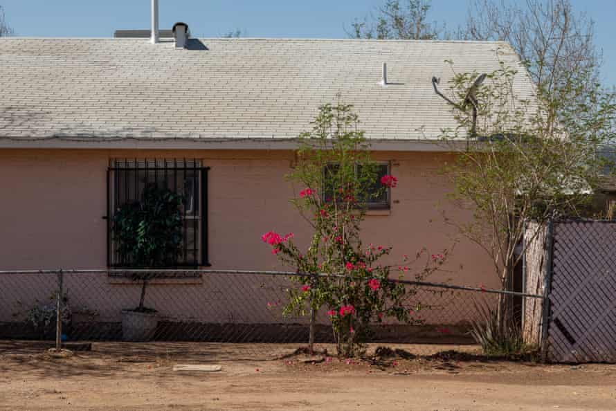An artificial tree blocks a window in the Edison-Eastlake neighborhood in Phoenix, Arizona. There is minimal shade in the neighborhood.