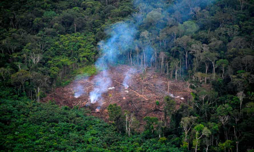Deforestation in Colombia, the country that had the largest number of people killed while trying to protect forests, rivers and ecosystems in 2020.