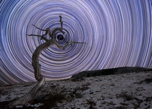 Holding Due NorthJake Mosher (USA). A weathered juniper tree in Montana's northern Rocky Mountains is filled with arced star trails and in the centre sits Polaris, the brightest star in the constellation of Ursa Minor. It took several test frames of long exposures to make sure that Polaris was in the right position, but eventually things lined up and the Moon provided enough light to the foreground, yet plenty of dark skies to allow a high enough ISO to capture lots of stars.