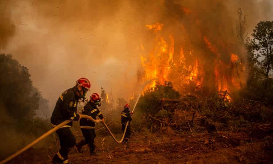 Un gruppo di vigili del fuoco serbi sta cercando di spegnere un incendio nel villaggio di Gladzona, sull'isola greca di Evia.
