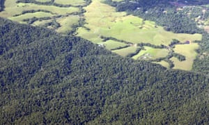 The abrupt line between pristine protected rainforest and land cleared by early settlers for dairy pasture in north Queensland