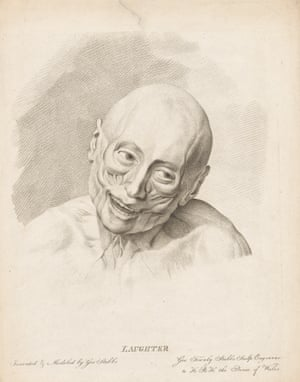 Clinical irony … Laughter, one of George Stubbs's anatomical studies.