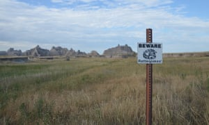 Signs at trail heads in the Badlands National Park warn of snakes in the grass.