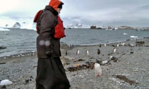 Head of Russian Orthodox church quizzes penguin on Antarctica.