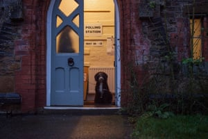 Dexter, a sheepadoodle, waits patiently at the entrance to the polling station in the village of Medbourne in the East Midlands.