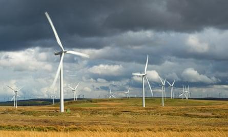 Windfarms in a field