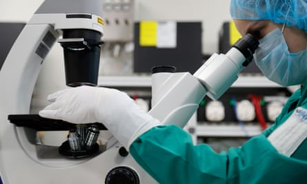 A scientist examines Covid-19 infected cells under a microscope