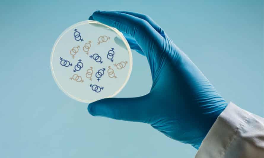 Scientist holding a Petri dish