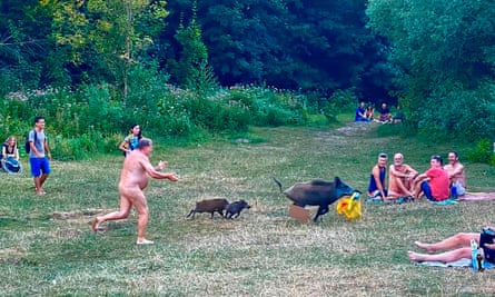 'When he returned from the forest, everyone applauded him.' The nudist chased the boar - and a yellow bag containing his laptop - into undergrowth near Berlin's Teufelssee.