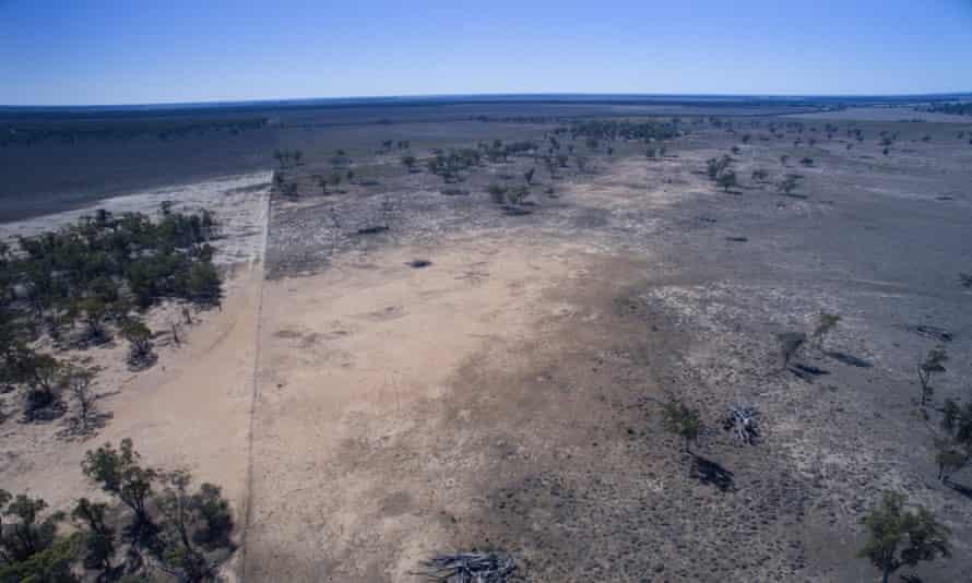 Land clearing near Moree
